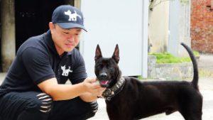 Poren-Huang-THE-DOGS-NOTES